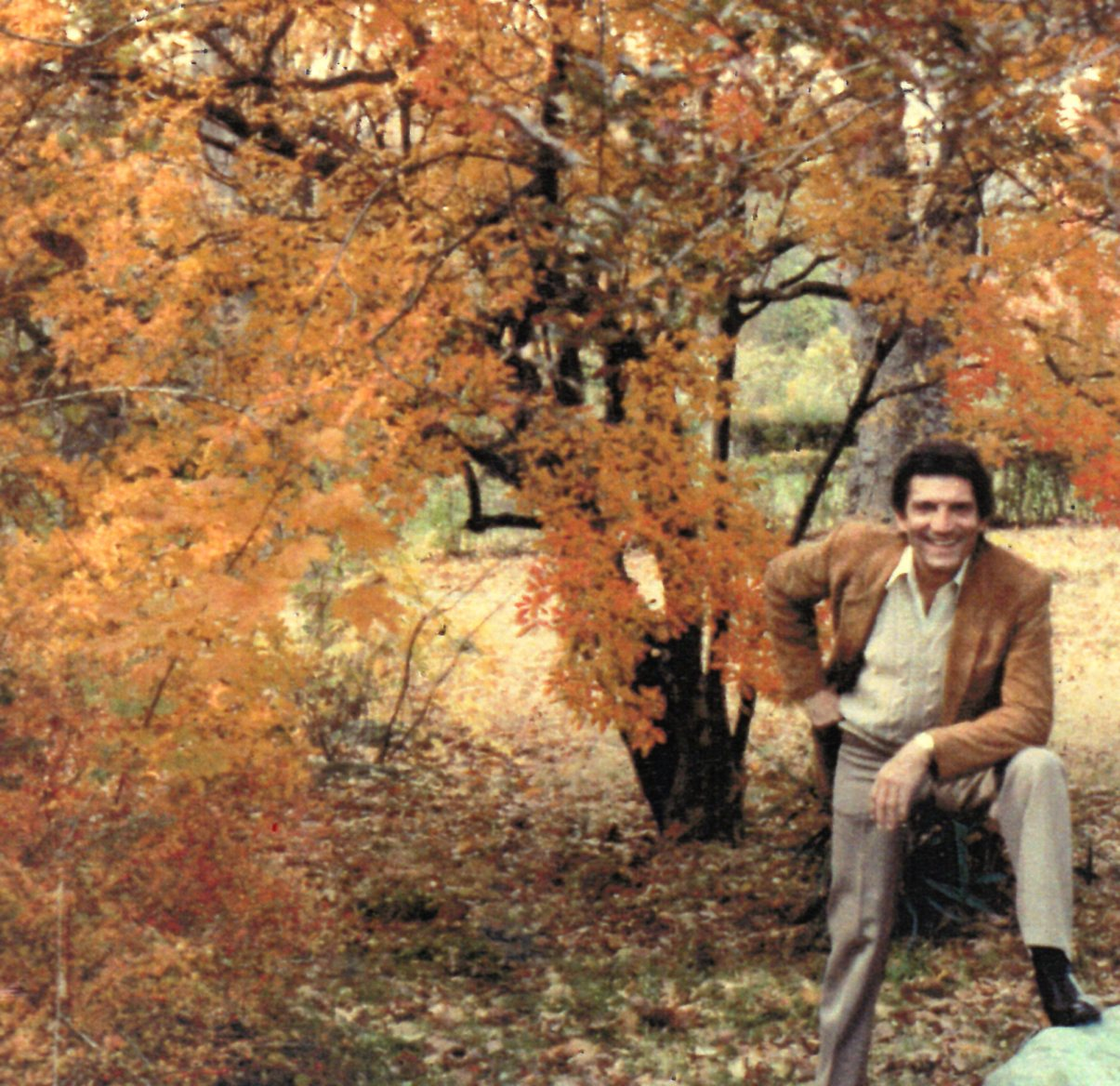 Sergio Franchi - Autumn Leaves